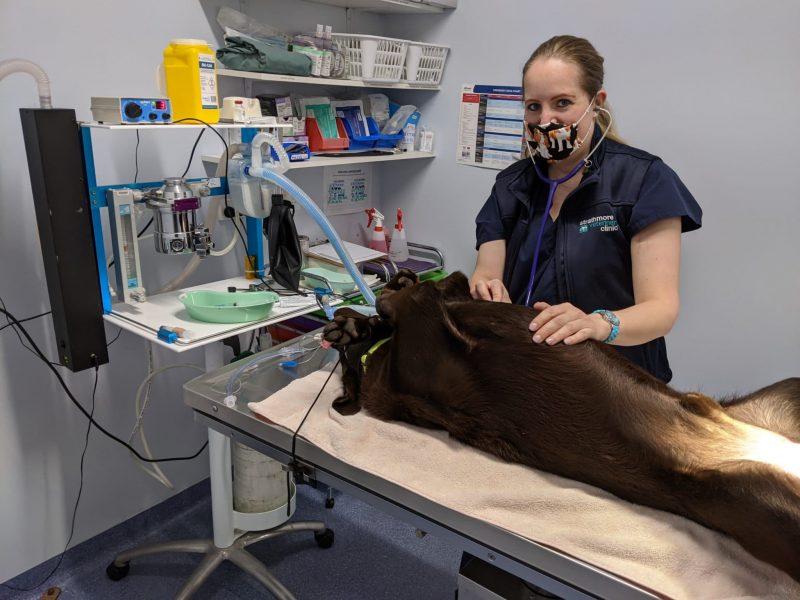 Lauren at surgery SVC